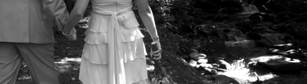 The Perfect Dress - Wedding Gown - Sash Pin