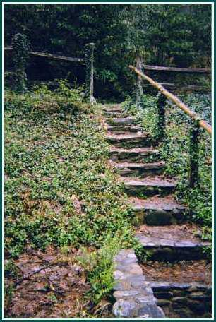 Back entrance steps at Maggie Valley's Most Romantic Inn - Timberwolf Creek Bed and Breakfast - NC - Smoky Mountains