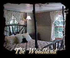 Woodland Room - queen jacuzzi room with private deck - Maggie Valley Timberwolf Creek Bed & Breakfast Inn in the Mountains of North Carolina NC USA